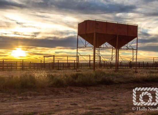 The first glimpse of sun on  the Matador Ranch in West Texas.