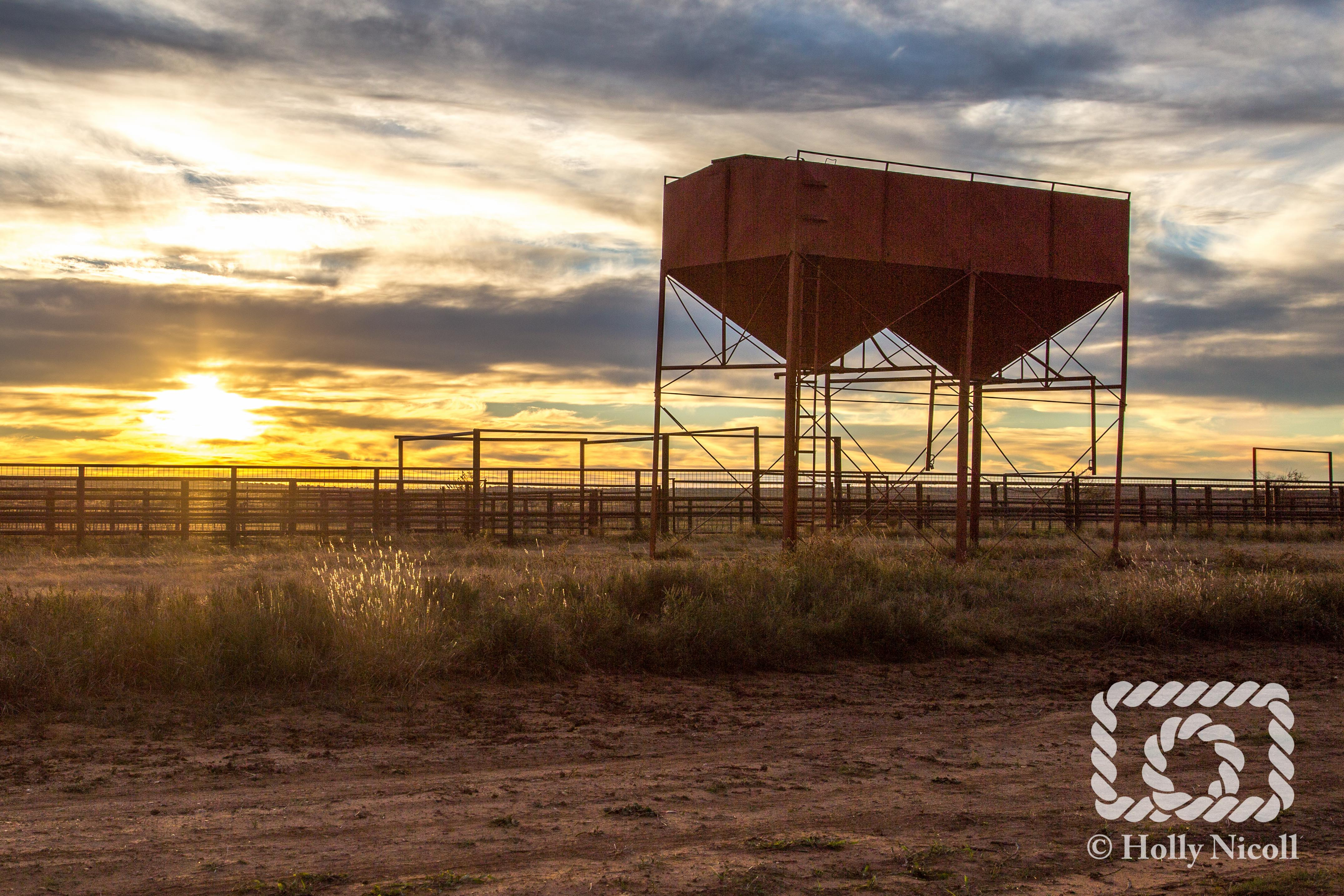 The sun rises behind feeder bins on the Matador Ranch in West Texas.