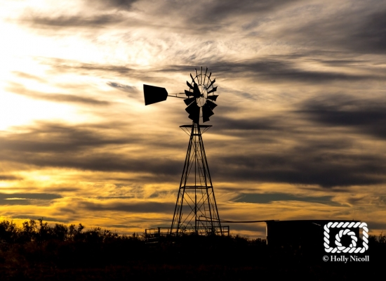West Texas windmill on the Matador Ranch
