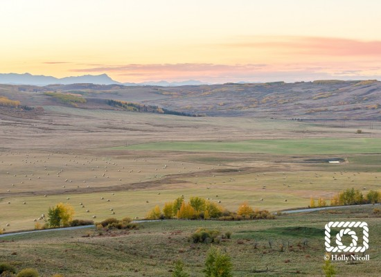 Fall colors in the Hay Valley along Brushy Ridge south of Cochrane
