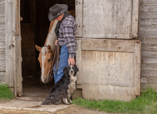 Cowboy holds his horse and pets his dog in a barn door