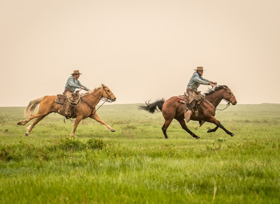 Cowboys race each other across the prairie landscape