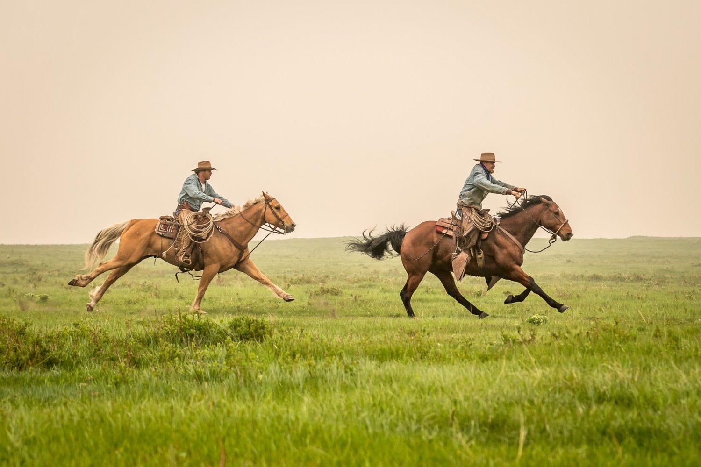 Cowboy horse race