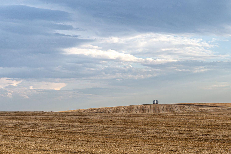 Crop Watchers