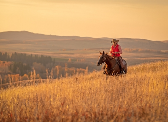 A cowgirl rides her horse along the ridge on a beautiful fall evening.