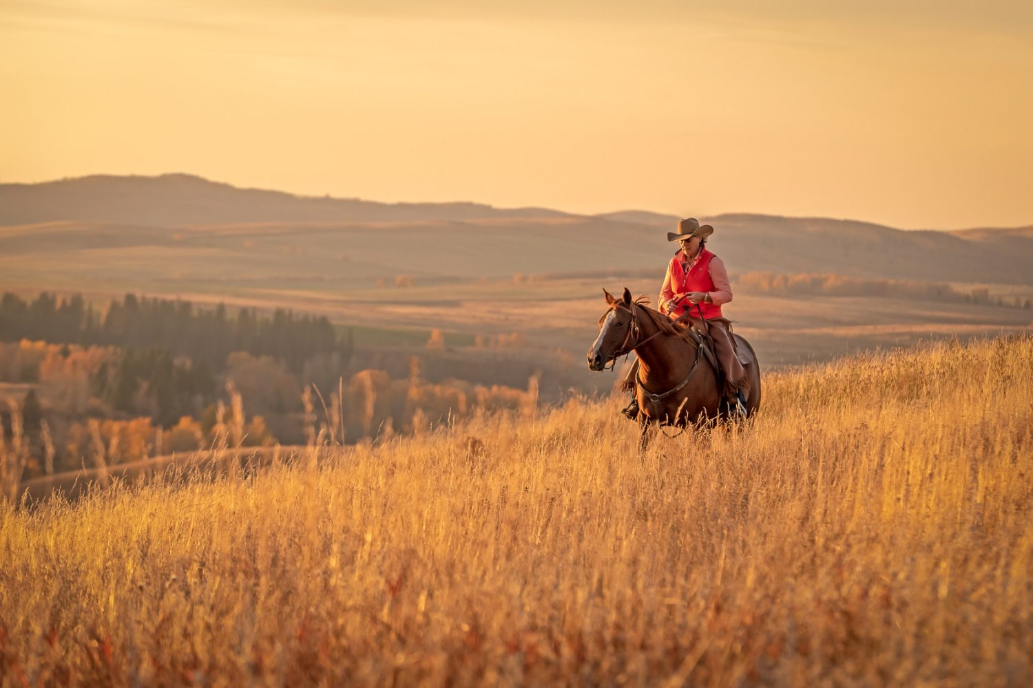 A cowgirl rides along the ride on a fall evening